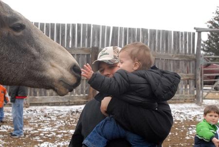 Petting the animal