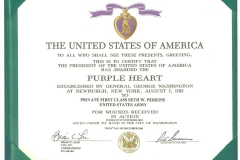 Seths Purple Heart